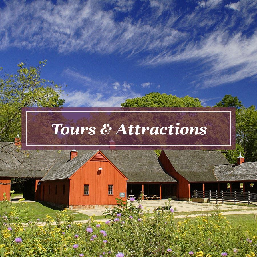 Tours and Attractions